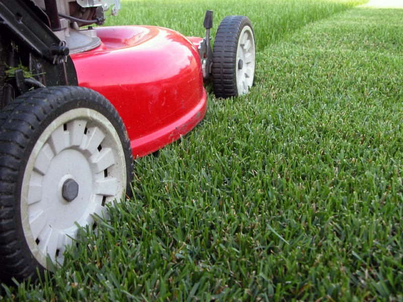 Landscaping & Lawn Care Services